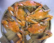 Stevensville Crab Shack Maryland Steamed Crabs
